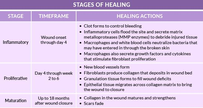 open wound care antibiotic treatment amp healing time - 656×350