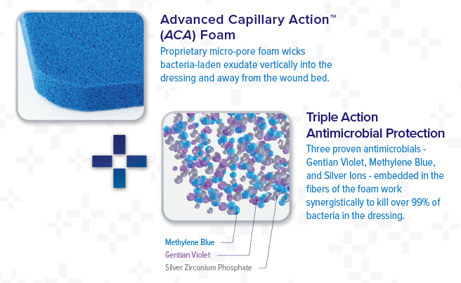 How DermaBlue+™ Foam works: ACS and triple antimicrobial actions